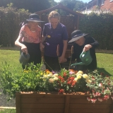 A day in the garden at Birch Green